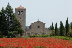 Read more about the article La Chiesa Abbaziale